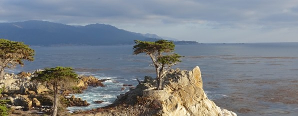 17 Mile Drive and Big Sur