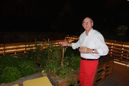 After midnight - inspecting the tomatoes growing in the Rooftop garden for asylum seekers