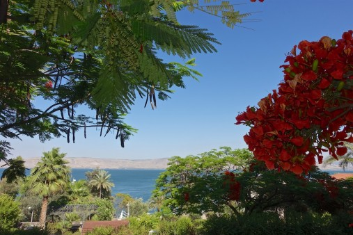 The Sea of Galilee from The Doctors House of the Scots Hotel, Tiberias