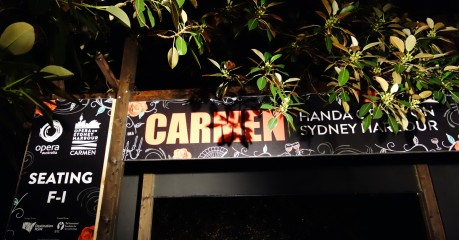 Entrance to 'Carmen' along a path beneath the dripping, century-old  Moreton Bay Fig trees